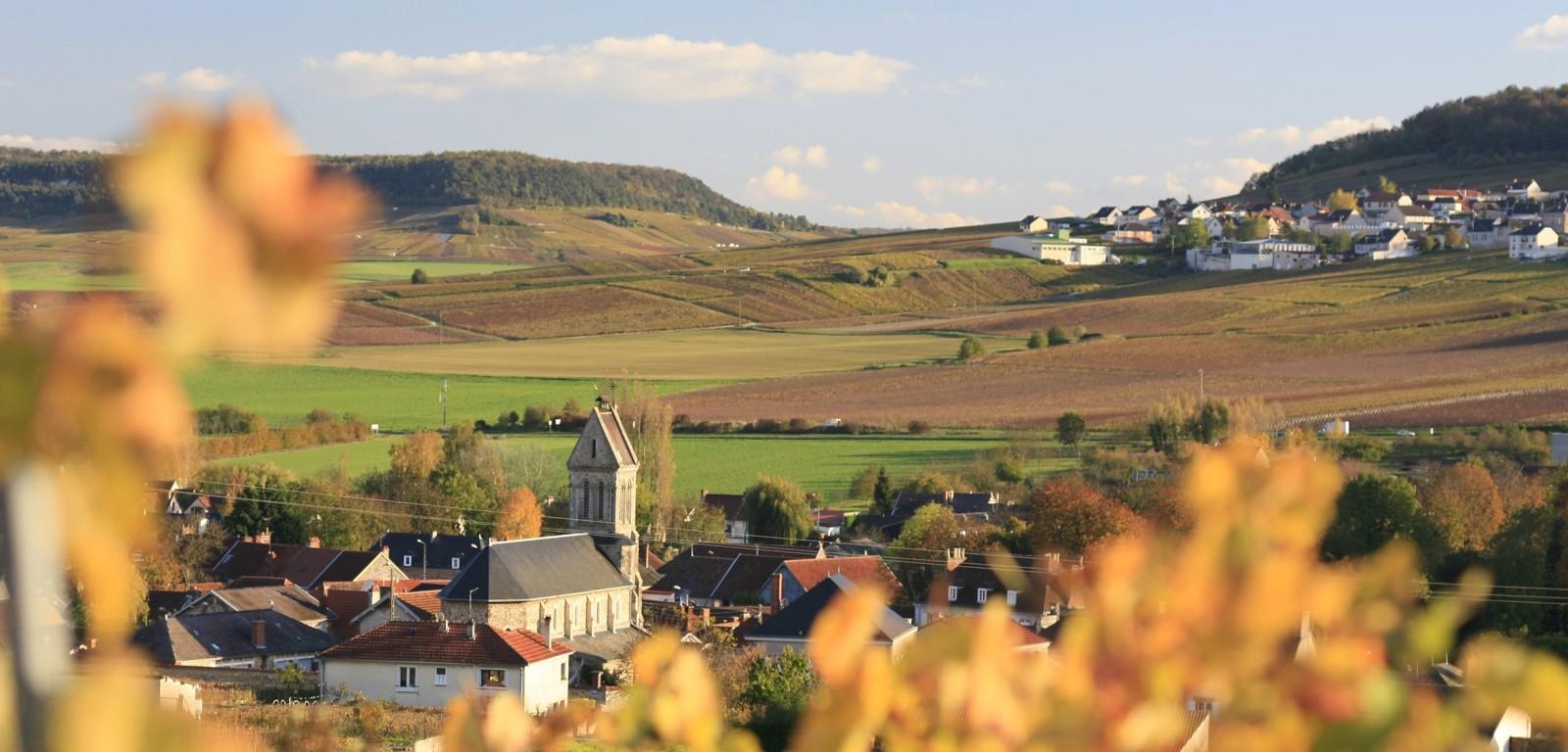 MOUSSY - photo du village
