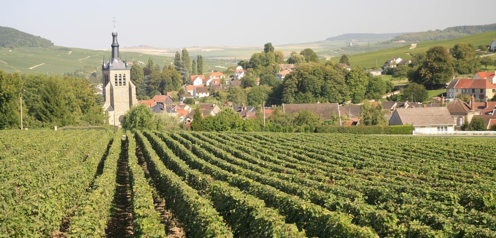 SAINT MARTIN D'ABLOIS - photo du village
