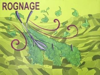 Rognage